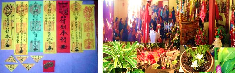 Bùa Mê Thuốc Lú Trong Thế Giới Bùa Ngải Việt Nam Xưa - Bình Luận - Việt Báo  Daily Online