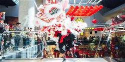 wsa-lny-lion-dance-photo