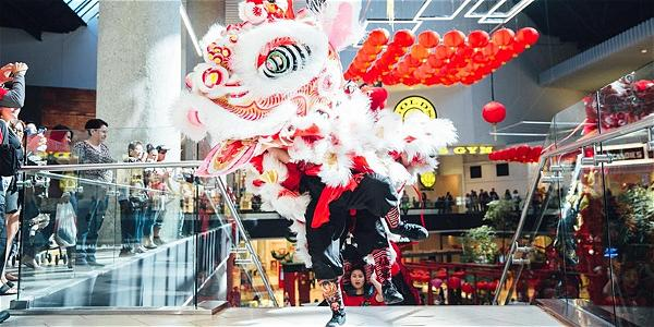 WSA LNY Lion Dance Photo