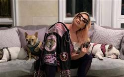 lady-gaga-and-3-dogs