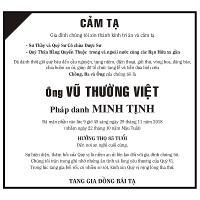 ct-vu-thuong-viet-12p