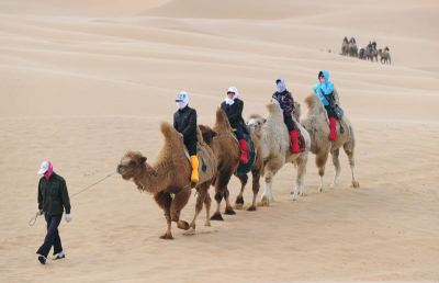 afp_camel_tourism_in_china-large-content