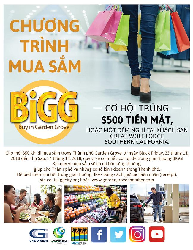 Garden Grove_Black Friday Goes BiGG Vietnamese 2018