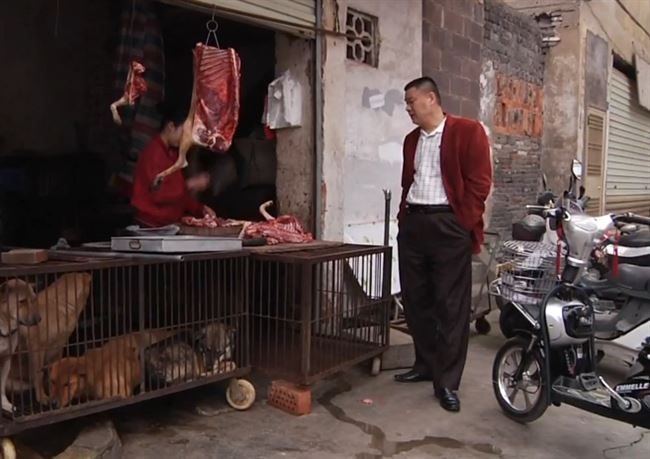 a_thit_cho_dog_meat_resized