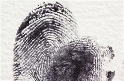fingerprint-crime-criminal-court