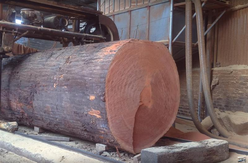 a-go-lam-nghiep-wooden-log-forest-saw-mill