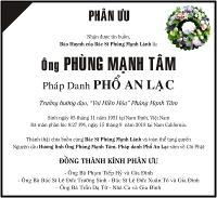 pu-phung-manh-tam-vb-12p