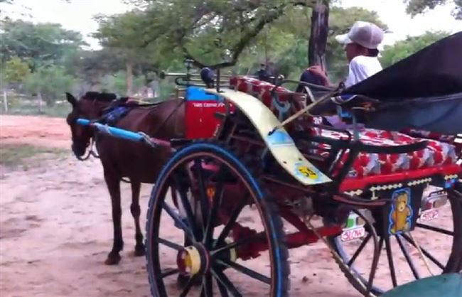 a-myanmar-horse-carriage-resized