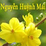 Nguyễn Huỳnh Mai