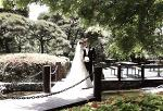 a-wedding-marriage-bride-dressjpg